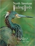 North American Wading Birds (Wildlife) (089658402X) by Netherton, John