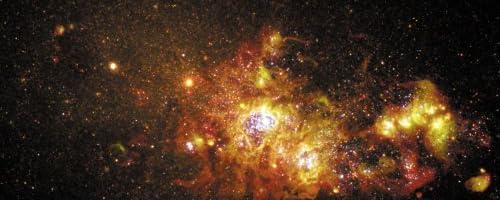 ハッブル宇宙望遠鏡が見た宇宙 [DVD]