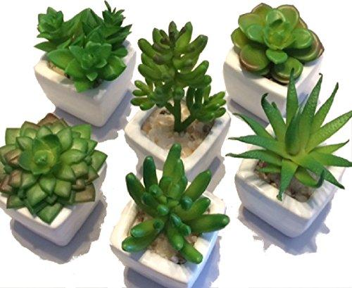 フェイク グリーン ポット ミニ 観葉植物 光触媒 多肉 植物 インテリア 鉢 6種類セット P400