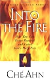 img - for Into The Fire book / textbook / text book