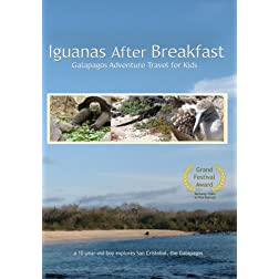 Iguanas After Breakfast