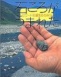 石ころがうまれた―ビロード石誕生のひみつ (地球ふしぎはっけんシリーズ)