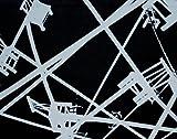 Ai Weiwei: Beijing, Venice, London, Herzog & de Meuron