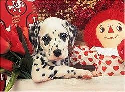 Dalmatian Puppy 300 Piece Jigsaw Puzzle