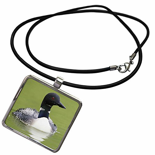 3dRose Florene Birds - The Beautiful Black n White Gavica Loon - Necklace With Rectangle Pendant (ncl_62429_1)