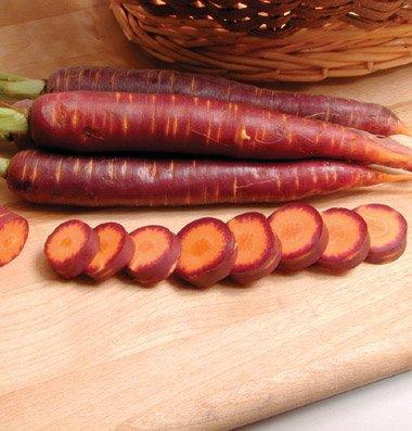 Pelleted Seeds Carrot Purple Haze D2680Pa (Purple) 100 Seeds By David'S Garden Seeds