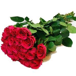 blumen zum valentinstag besondere rosen pink lila 20 stiele echte schnittblumen im bund. Black Bedroom Furniture Sets. Home Design Ideas