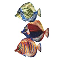 Next Innovations WA3DSAFishset Angel Fish Set Refraxions 3D Wall Art