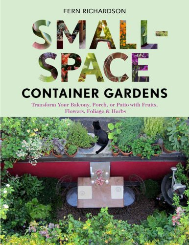 small-space-container-gardens-transform-your-balcony-porch-or-patio-with-fruits-flowers-foliage-and-
