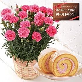 【送料無料!母の日ギフト】カーネーション5号鉢と苺ロールケーキのセット【5/12~5/13お届】