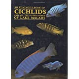 Cichlids and the Other Fishes of Lake Malawiby Ad Konings