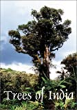 img - for Trees of India book / textbook / text book