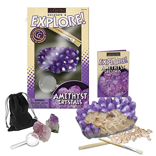 GeoCentral Excavation Dig Kit - Amethyst Clusters