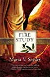 Fire Study (The Study Series)