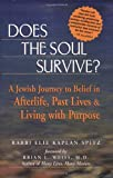 Rabbi Elie Kaplan Spitz Does The Soul Survive: A Jewish Journey to Belief in Afterlife, Past Lives and Living with Purpose