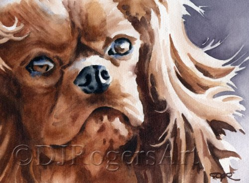 """Ruby Cavalier King Charles Spaniel"" Art Print Signed by Watercolor Artist DJ Rogers"