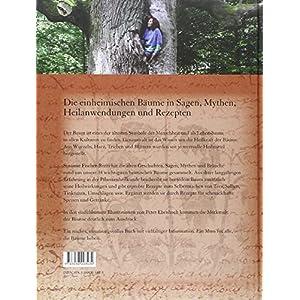 Blätter von Bäumen: Heilkraft und Mythos einheimischer Bäume