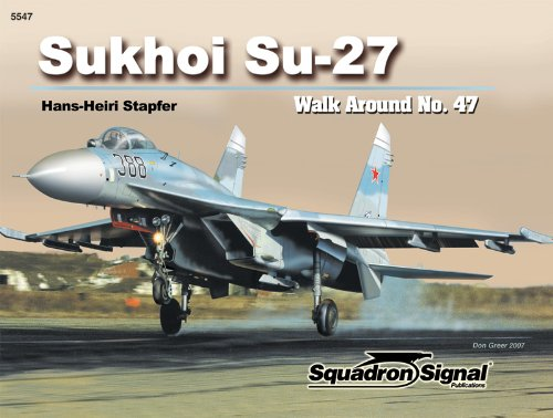 Sukhoi Su-27 Flanker - Walk Around No. 47