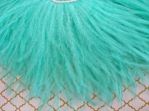 Moonlight Feather Aqua Ostrich Fringe Trim Feather 4 Inch Strip of Ostrich Feathers