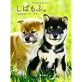 しばもふ。~柴犬広場のかわいい子犬~ (もふ。シリーズ)