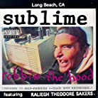 Sublime - Robbin the Hood mp3 download