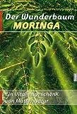 Der Wunderbaum Moringa - Das Hörbuch