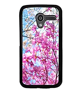 Fresh Spring Flowers 2D Hard Polycarbonate Designer Back Case Cover for Motorola Moto X :: Motorola Moto XT1052 XT1058 XT1053 XT1056 XT1060 XT1055
