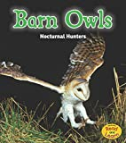 Barn Owls: Nocturnal Hunters (Night Safari)