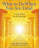 img - for What To Do When You Are Dead: Living Better in the Afterlife book / textbook / text book