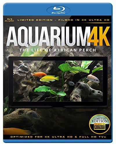 Aquarium 4K - The Life Of African Perch [Blu-ray]