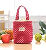 Franterd Waterproof Picnic Insulated Fashion Lunch Cooler Tote Bag Travel Organizer Box (Red)