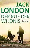 Der Ruf der Wildnis: Roman (dtv Klassik)