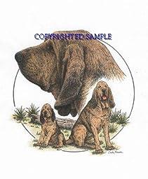 Bloodhound - Trio Image by Cindy Farmer