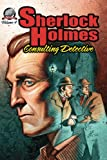 img - for Sherlock Holmes: Consulting Detective, Volume 4 book / textbook / text book