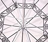 Creative Transparent Bird Cage Umbrella Long Handle Clear Umbrella European Apollo Transparent Umbrella (London building)