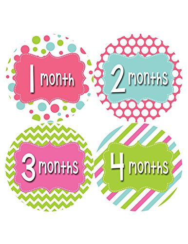 Months in Motion 408 Monthly Baby Stickers Girl Monthly Photo Milestone Month