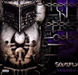 Enslaved [Special Edition] By Soulfly (2012-03-12)