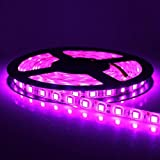 CMC LED Light Strip Lamp Pink Waterproof Strip Indoor Outdoor LED Strip Lights SMD 2835 16.4Ft 5M 300leds Flexible Rope Lighting Tape Lights for DC 12