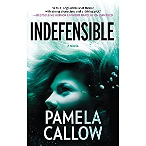 Indefensible Audiobook