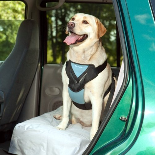 Bergan Dog Auto Harness with Tether, Large (Dog Car Harness Seat Belt compare prices)