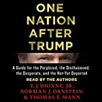 One Nation After Trump: A Guide for the Perplexed, the Disillusioned, the Desperate, and the Not-Yet Deported | E. J. Dionne,Norman J. Ornstein,Thomas E. Mann