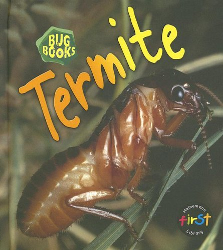 Termite (Bug Books)