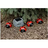 e-Joy® solar ladybug garden lights, Solar Powered LED Garden Lights, Solar Powered LED Accent Lights, Outdoor String Lights, Outdoor Lights, Solar Powered Garden Outdoor Decorative Landscape LED Lights Year-round, Great Gift! String Light for Outdoor, Lawn, Indoor Decor, Home, Patio, Outside Garden, Wedding, Party, Holiday, Seasonal Decorations (Set of 4 with Red Color)
