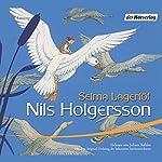 Nils Holgerssons wunderbare Reise durch Schweden | Selma Lagerlöf