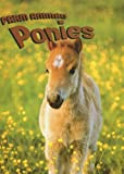 img - for Ponies (Farm Animals) book / textbook / text book