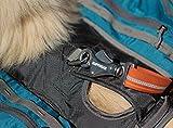 Ruffwear 50101-430M Hunderucksack, Medium, pacific blau -