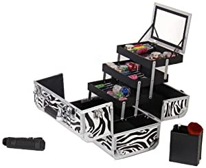 Amazon.com: Shany Cosmetics Shany Premium Collection Makeup Train Case