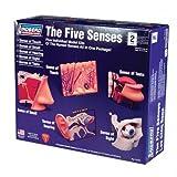 Lindberg The Five Senses