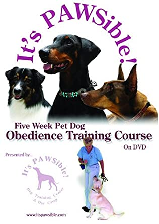 Dog obedience training dvd reviews
