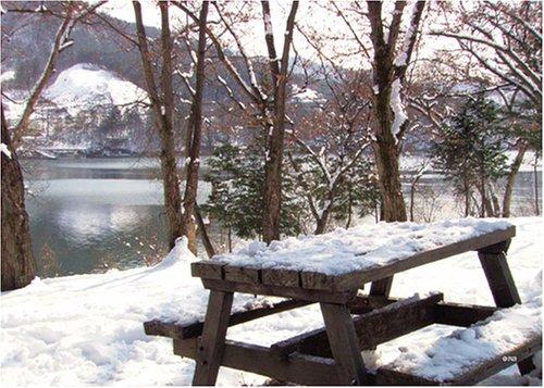 冬のソナタ・ロケ地より アートパズルシリーズ 108ピース 風景 冬の南怡島 湖畔のベンチ 108-128